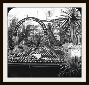 fruit and vegetable display at the Chicago Exposition