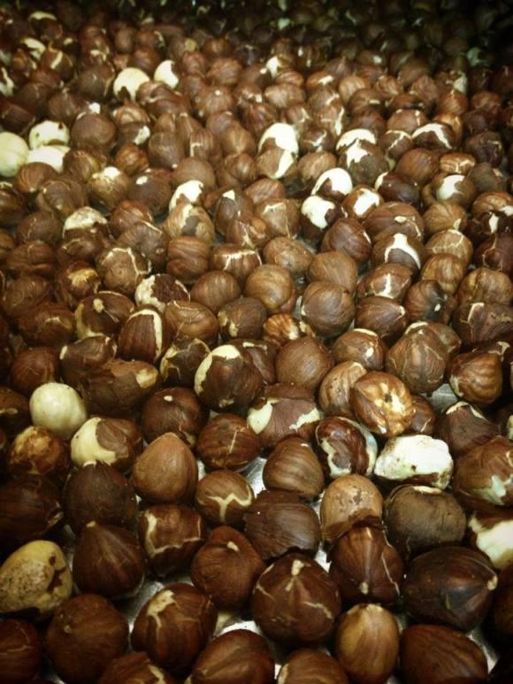 024 - Hazelnuts