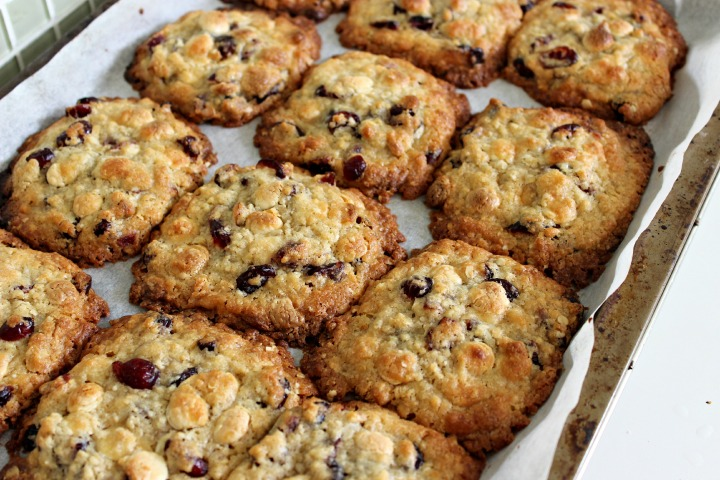 Homemade white chocolate and cranberry cookies